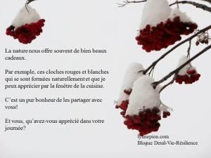 Cloches du temps des fêtes naturelles déc 2013