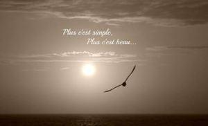 plus c'est simple plus c'est beau