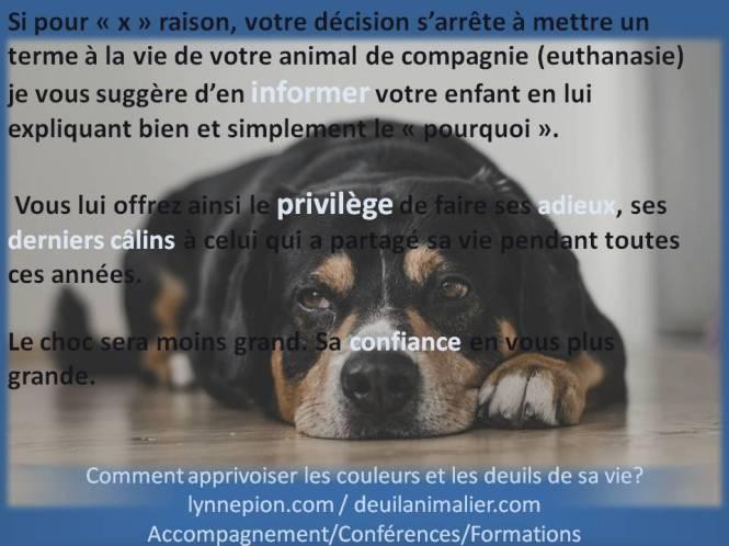 deuil animalier informer les enfants Lynne Pion