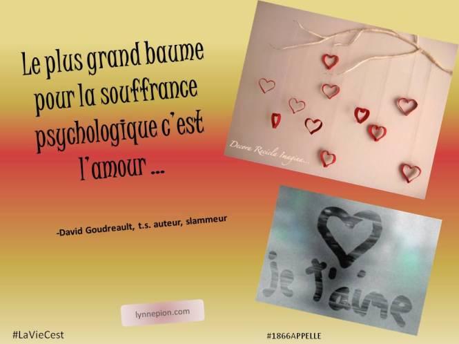 citation baume sur la souffrance l'amour LynnePion