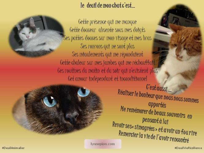citation deuil animalier chat Lynne Pion