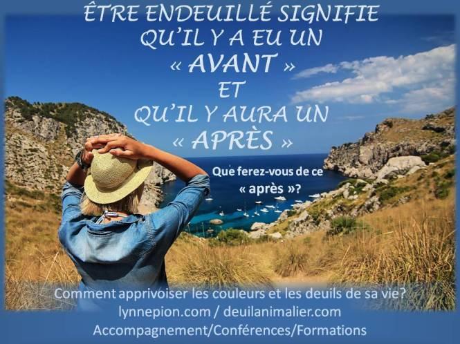 être endeuillée avant-après ses choix Lynne Pion Deuil-Vie-Résilience accompagnement conférence
