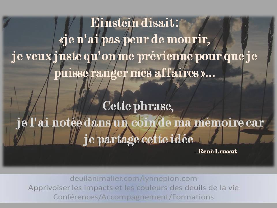 Citation Einstein Sur La Mort Pour Sites Lynne Pion Deuil