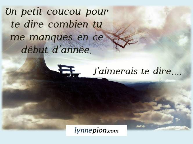 citation J'aimerais te dire Lynne Pion