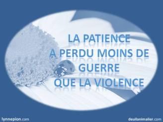 citation sur la vie, la patience deuil-vie-résilience Lynne Pion