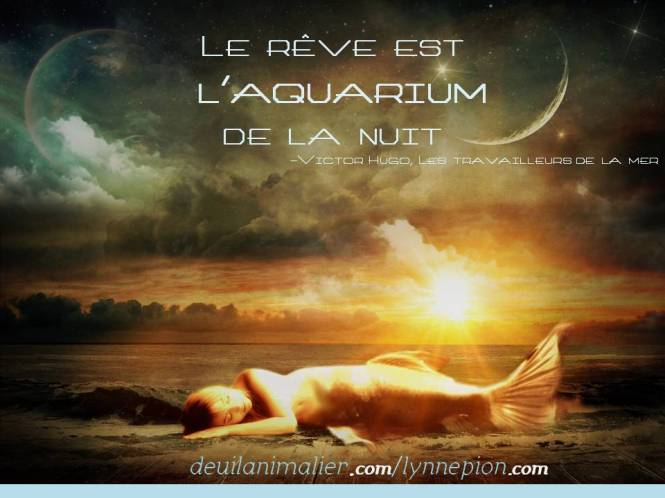 Citations Rêve aquarium de la nuit V Hugo Lynne Pion 2016