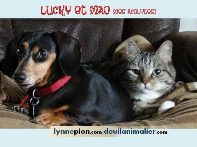 Citations Lucky et Mao acolytes Lynne Pion 2016.jpg